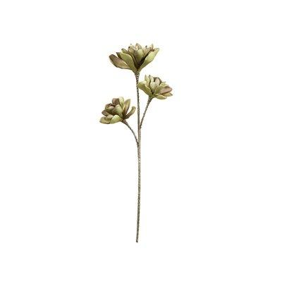 Flor espuma morada y verde