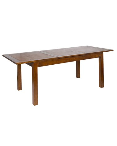 Table ext forest 22x/160x90x80