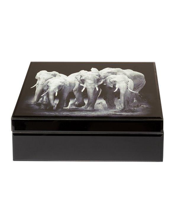 Elephant jewelery box