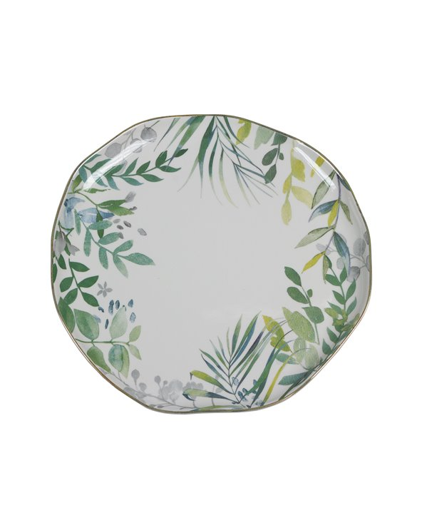 Amazonia plate