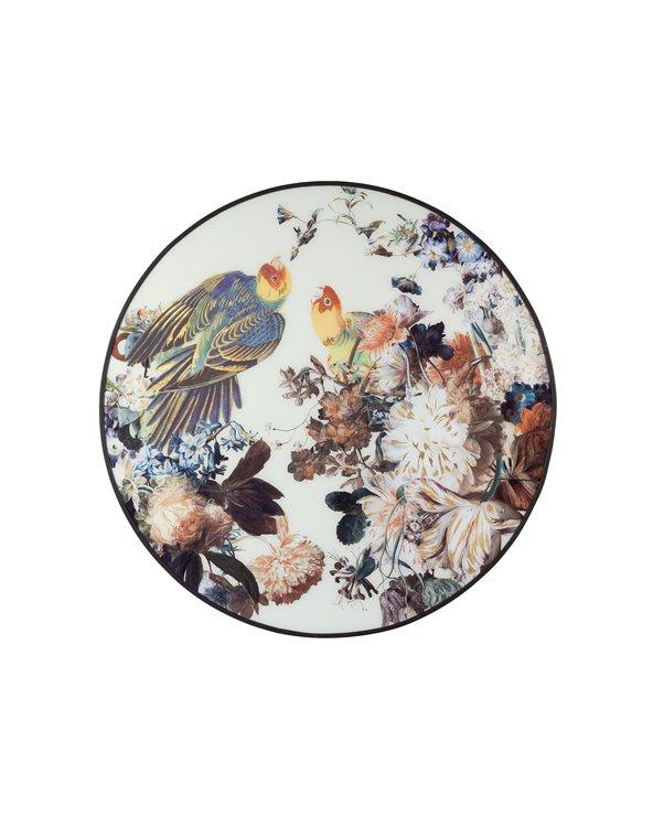 Vit papegoja målning
