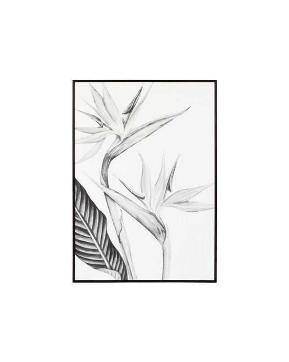 Peinture oiseau de paradis noir et blanc