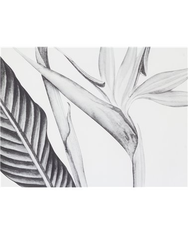 """""""Black and White bird of paradise"""" painting"""