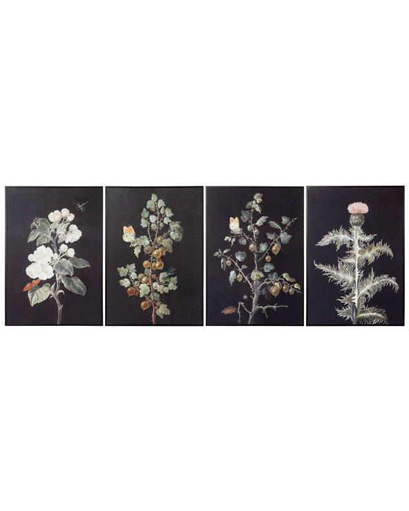 Ställ in 4 växter målningar