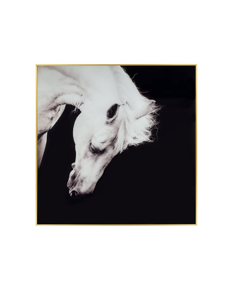 Cuadro caballo blanco