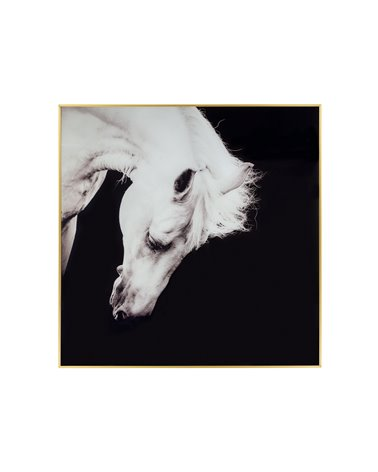 Quadre cavall blanc