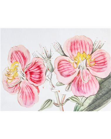 """""""Drawing flowers"""" painting"""