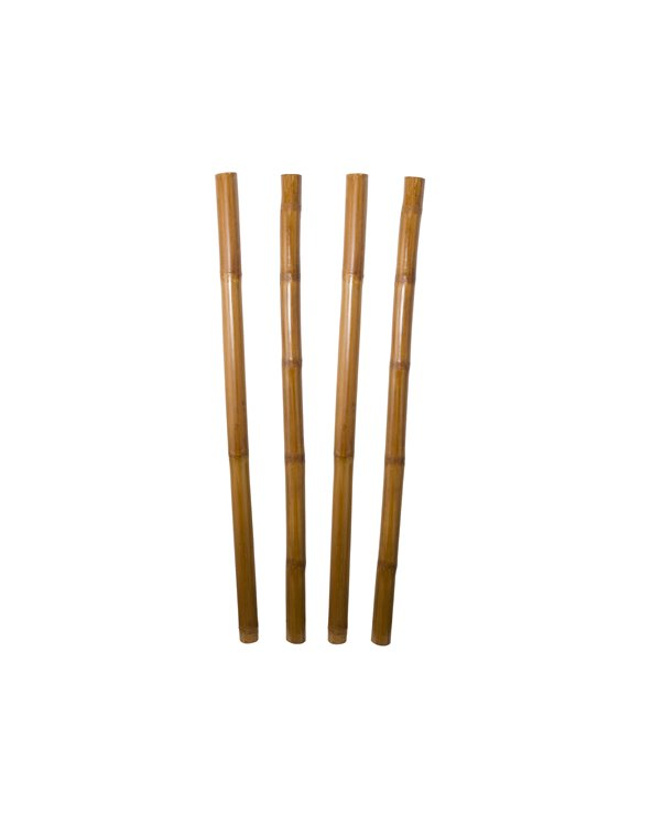 Juego de 4 cañas de bambú