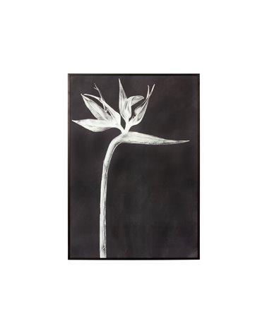 """Black bird of paradise"" painting"